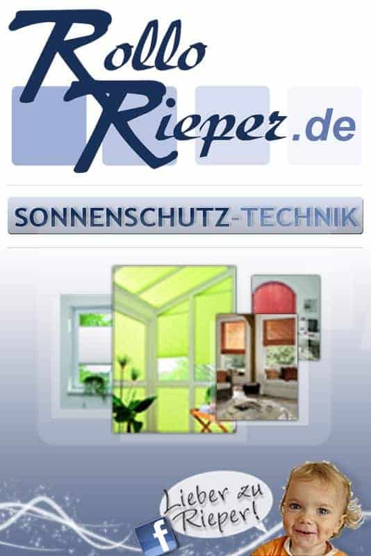 Unternehmenszahlen von Rollo Rieper überzeugten erneut in 2010 – weiter positive Aussichten für laufendes Geschäftsjahr