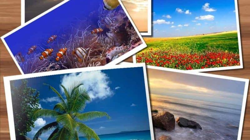 Jetzt neu: Wandbilder und Fototapeten mit eigenen Fotos oder aus der Datenbank von Fotolia bedruckt