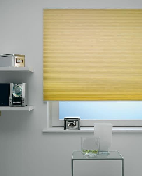 neue rubrik das rollo des monats im mai ist es das plissee von rollo rieper sonnenschutz. Black Bedroom Furniture Sets. Home Design Ideas