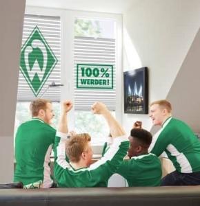 Werder Plissee jetzt direkt auf RolloRieper.net bestellen