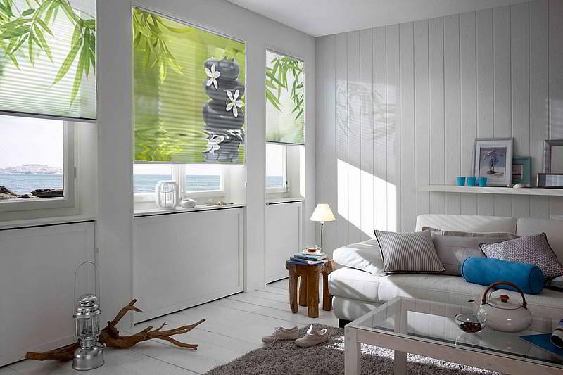 individuelle fotoplissees mit wunschmotiv nach ma. Black Bedroom Furniture Sets. Home Design Ideas